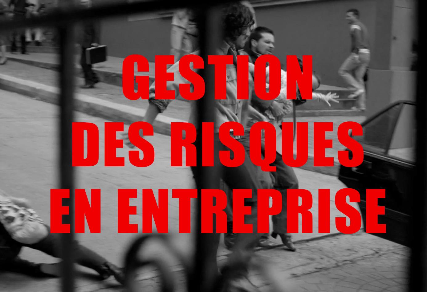 SF3Pro : Formation Gestion des risques en entreprise